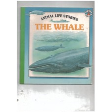 Animal Stories - The whale