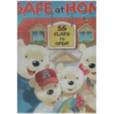 Safe at Home - 55 Flaps To Open
